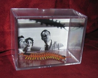 American producer/director William Castle 1959 Horror 'Classic'The Tingler(Starring Vincent Price) Inspired Display.*We Combine Shipping*