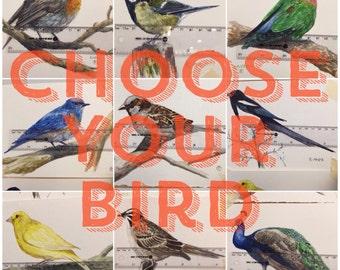 Custom bird watercolour painting.