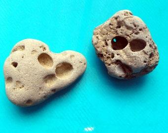 2 Pcs Rare Unusual Shape Sea Rocks Natural Holey Beach Stones Israel