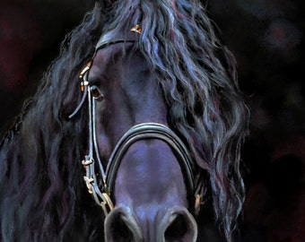 DARK KNIGHT fine art print, fresian horse from original pastel painting,friesian dressage horse, equine giclee print, mystical horse print