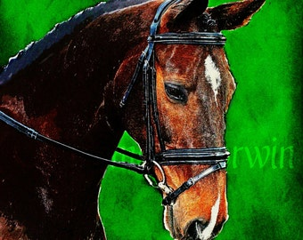 """English bay horse in bridle painting: hunter/jumper horse art print 12x14"""" horse painting"""