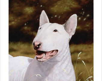 Bull Terrier Dog Portrait. Limited Edition Print. Personally signed and numbered by award Winning Professional artist JOHN SILVER. jsfa003