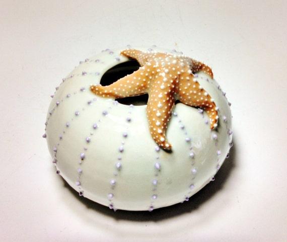 starfish sea urchin sculpture sea star vase sea life beach. Black Bedroom Furniture Sets. Home Design Ideas