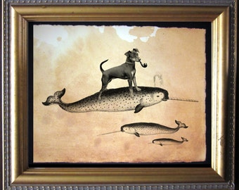 Miniature Pinscher Min Pin Riding Narwhal - Vintage Collage Art Print on Tea Stained Paper - Vintage Art Print - Vintage Paper