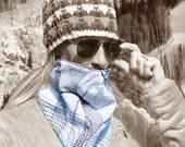 Ski Mask Face neck warmer gaiter for skiing bandanna walking, running, biking, riding,  motorcycle mask, dog walking - Vortex 067