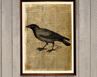 Blackbird poster Animal print Bird illustration Dictionary page WA138