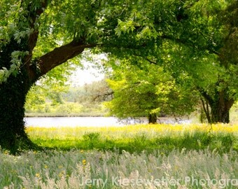 Spring Landscape Photo Monet Style Waterfront River Creek Photograph Green Meadow Nature Photography, Green Trees, Yellow Flowers Home Decor