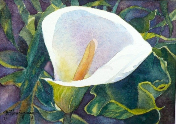 White Calla Lily Painting Original Watercolor Painting Of