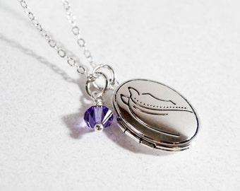 Silver Locket, Horse Locket, Birthstone Locket Necklace, Birthstone Necklace, Pony Jewelry, Horse Pendant