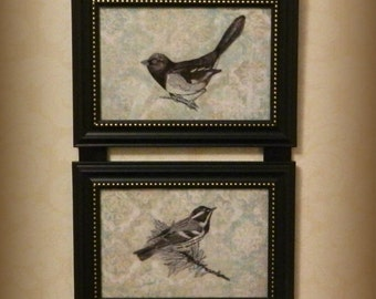 Bird Towhee, Warbler, Robin Picture Frame Collage Hanging Wall Art Decor