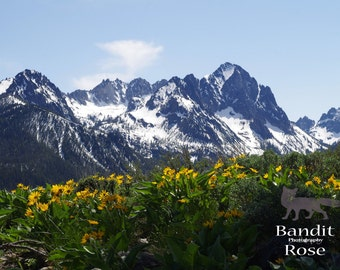 Sawtooth Mountains in Spring