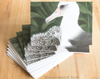 Albatross Pair Painting Blank Notecard Set of Five