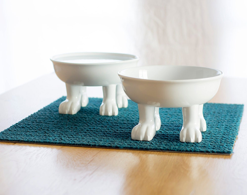 Large Elevated Dog Bowl Ceramic Explorers By Dylankendallhome