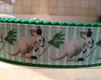 Kangaroo Large and Medium Dog Collar