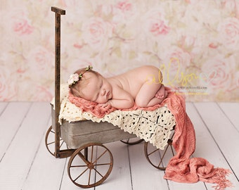 Photography Backdrop, Newborn Photography Backdrop, Vinyl Photography Backdrop, Baby Photography Background for Girls Floral - FLR148