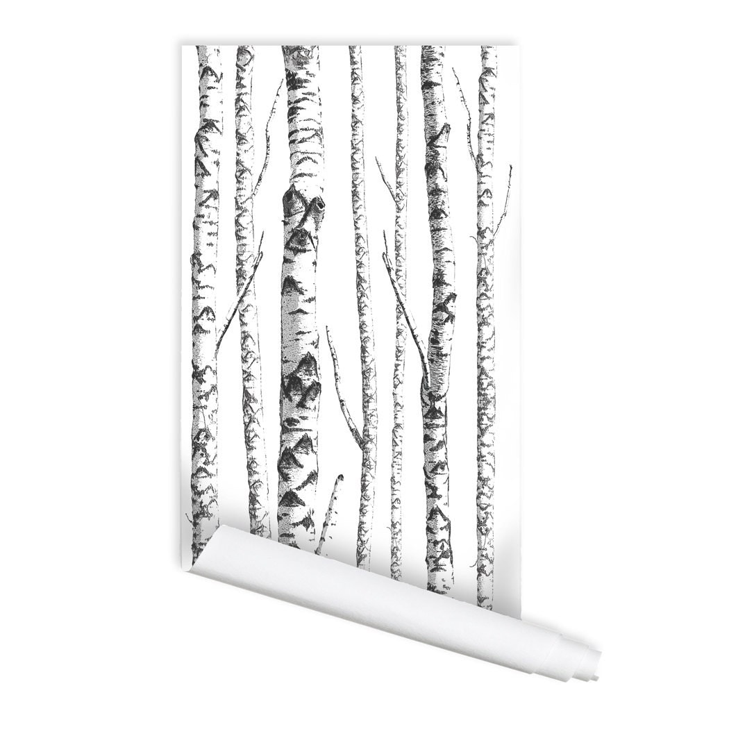 Birch tree 01 peel stick repositionable fabric wallpaper - Birch tree wallpaper peel and stick ...