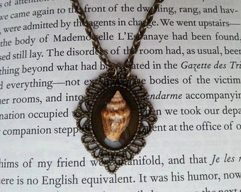 Small Simple Elegant Bronze Sea Shell Pendant Necklace