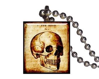 Vintage Anatomical Skull - Reclaimed Scrabble Tile Pendant Necklace