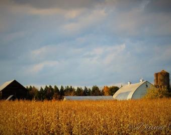Farmland Digital Art Landscape Photograpy New York For the Love of Farms