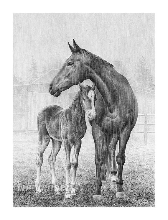 Cavalli in piedi sotto la pioggia madre che protegge il for Cavallo disegno a matita