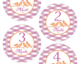 Baby Month Stickers Baby Onesie Stickers Baby Milestone Stickers Monthly Baby Stickers Bird Design Bodysuit Stickers