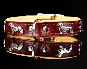 DACHSHUND real leather COLLARS BROWN  / Size  17,7  inch (45 cm)