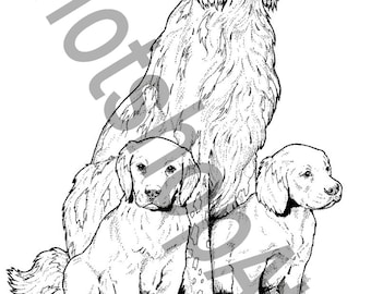 Dog Breed Coloring Book 40 Printable Pages PDF Instant Download Birthday Party Favors Activity Theme