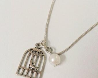 Silver pearl birdcage