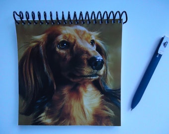 Long-Haired Dachshund Notebook