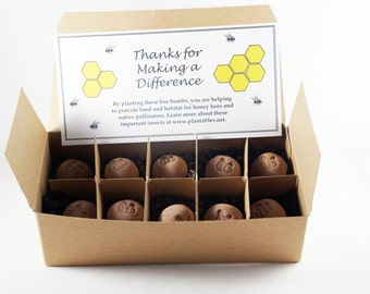 Bee Bombs - wildflower seed balls for pollinators, box of 10