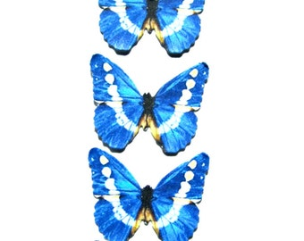 24 Blue & White Butterfly Paper Embellishment For diy wedding, diy butterfly school kit, butterfly cupcake topper, butterfly props, DIY ACEO