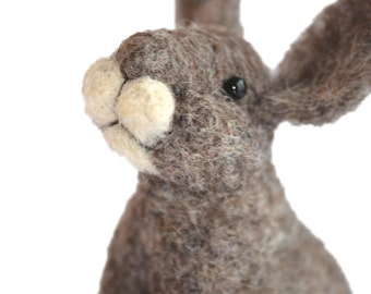 Needle Felting Kit - Bunny Rabbit DIY Craft Kit