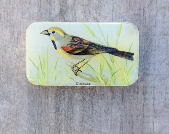 Bird Pill Box, Slider Tin, Mint Tin, Vintage bird