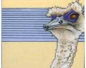 Super Ostrich- Small Print 4.5x4.5