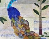 Peacock Art Fine Art Print of Original Mixed Media Collage