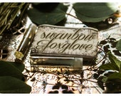 swanbow and foxglove - natural perfume oil mini twin vial sampler in aroma of currants, peaches & wildling woods
