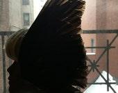 Black Bird Wing Feather Fascinator Headpiece