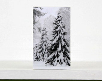 White Christmas, Evergreens in Snow, Trees, Holiday Decor, Winter, 3X5 Wood Panel