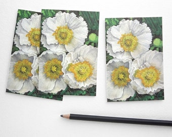 poppy flower cards, white poppies card set, botanical stationery, flower invitations