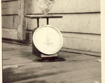 CHICK STANDING On SCALE In This Early Fun Photo Circa 1910s Chicken