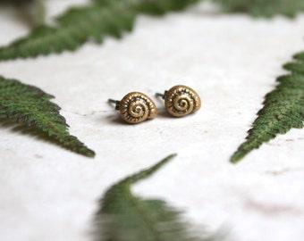 Sea Shell Earrings, Gold Seashell Earrings, Tiny Gold Studs, Snail Earrings, Nautilus Jewelry, Gold Shell Post Earrings, Sea Shell Jewellery