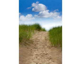 Trail Path up the Dune and to the Beach on Lake Michigan at Ottawa Beach State Park by Holland Michigan No.016 A Beach Seascape Photograph