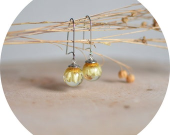 Daisy earrings, floral jewelry, terrarium jewelry, gift for a woman, gift under 40, romantic earrings, eco resin