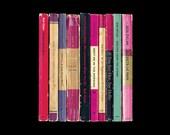 Bob Dylan 'Blood on the Tracks' Poster Print - Album As If Written as Penguin Books - Literary Music Art Print