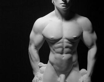 Hellenic Faun. Male nude Torso Study Sculpture.