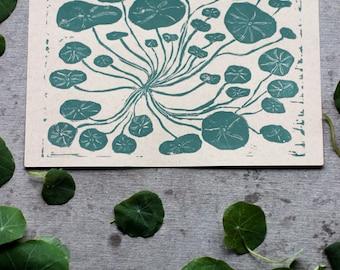Nasturtium Linocut Print