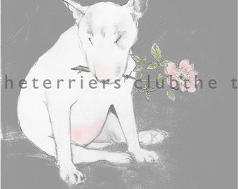 Bull Terrier with Dog Rose Card