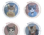 Cats In Clothes 4 Magnets - The Kids