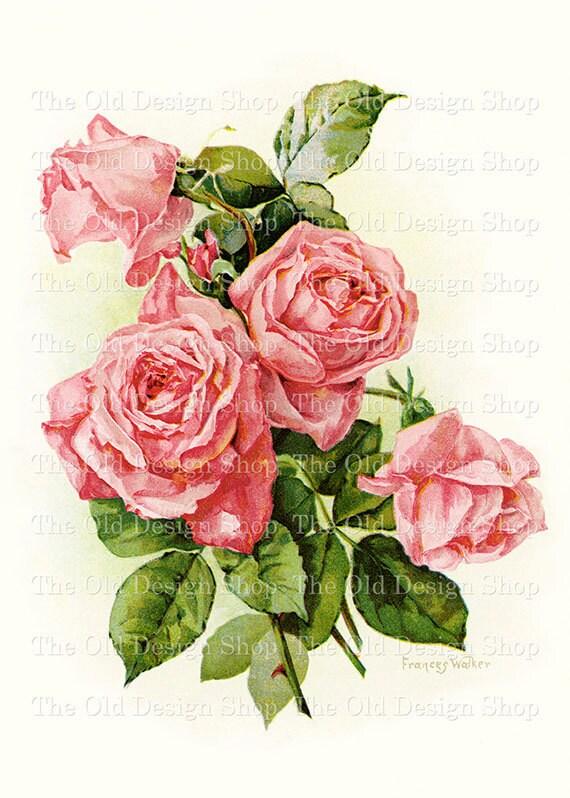 Frances Walker Pink Roses Printable Vintage Art Digital Download JPG Image