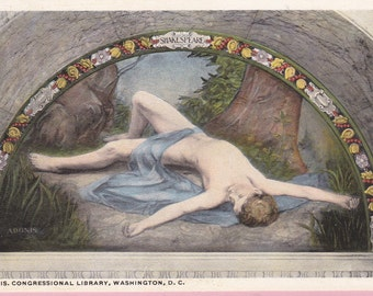 "Ca 1930's ""Adonis"" at Library of Congress Art Postcard - 1881"